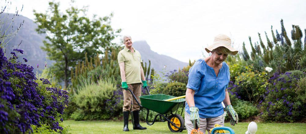 Gartenarbeit erleichtern