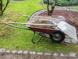 Gartentipps für die Gartenarbeit