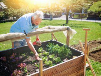 Gartentipps von 1000-Haushaltstipps.de