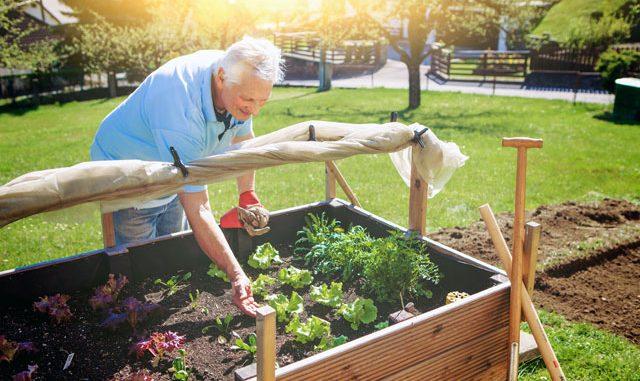 Garten anlegen tipps