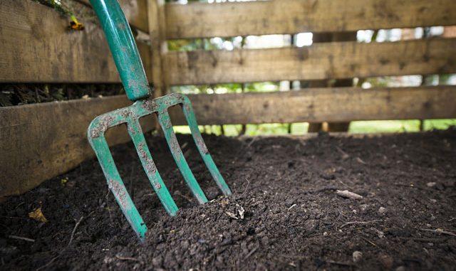 Kompost Erde