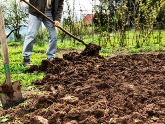 Lehmboden bearbeiten