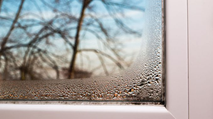 Luftfeuchtigkeit Senken Und Schimmel Vermeiden
