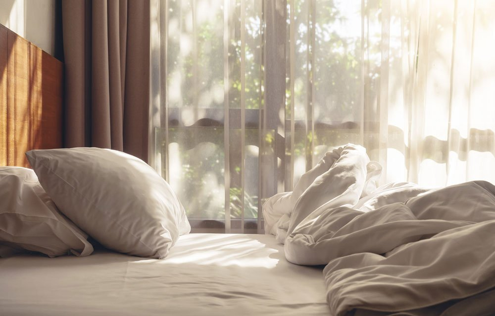 Milben bekämpfen - Hausstaubmilben entfernen und vorbeugen 1