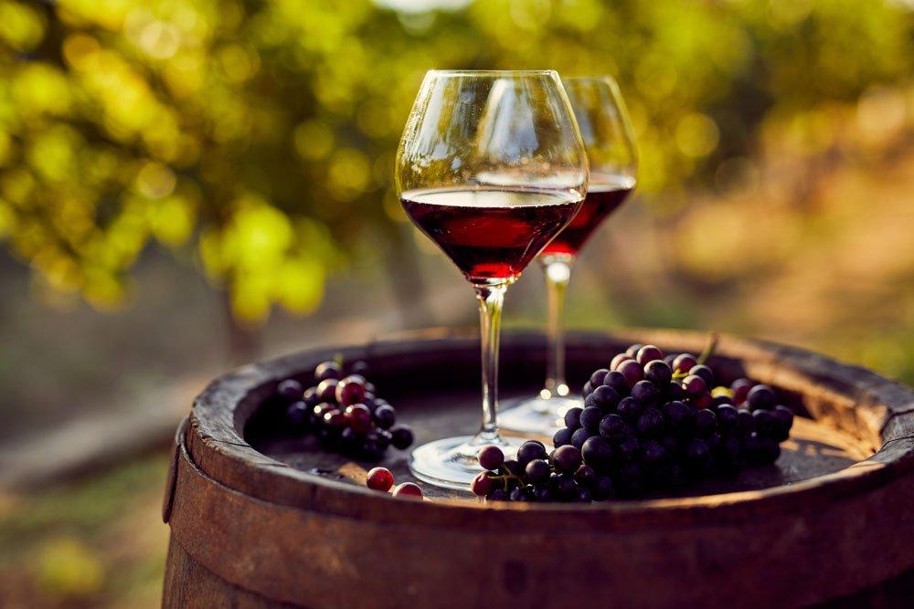 Weinkunde Rotwein
