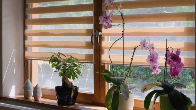Sonnenschutz Fenster