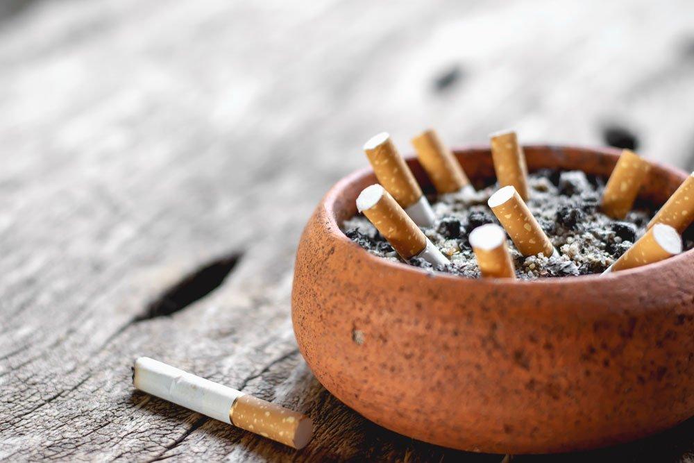 Spinnmilben bekämpfen - Zigarettenasche