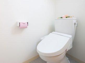Spülkasten WC entkalken