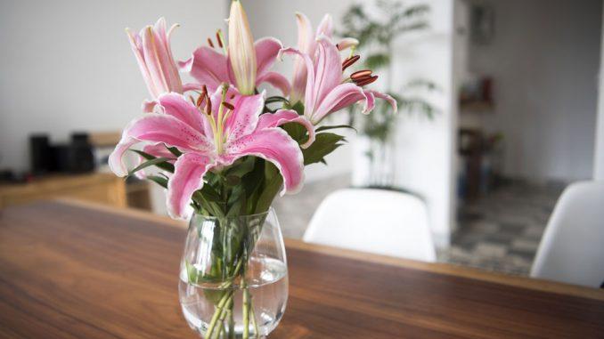 Vase reinigen