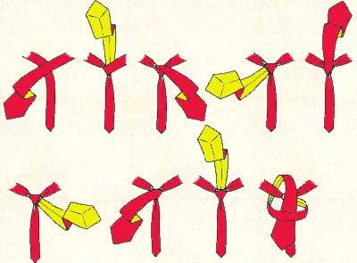 Anleitung für einen Windsor-Knoten