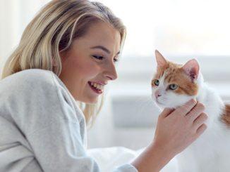 Zuhause für die Katze